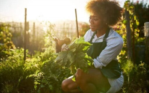 6 Nutritious Foods You Can Grow In Your Garden